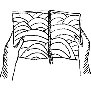 A drawing of two hands holding a landscape map.
