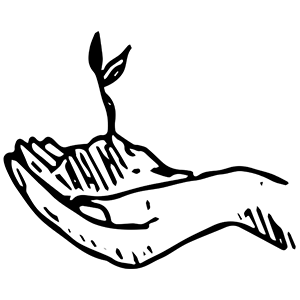 A seedling inside of a hand.