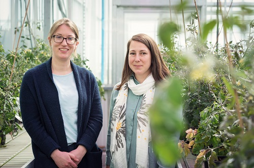 Juli Carrillo and Cara Haney stand smiling in a greenhouse, surrounded by plants.