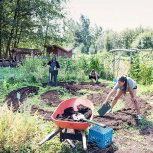 An Indigenous garden at the UBC Farm.